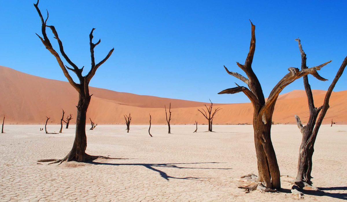 Namibie- désert de Namibe