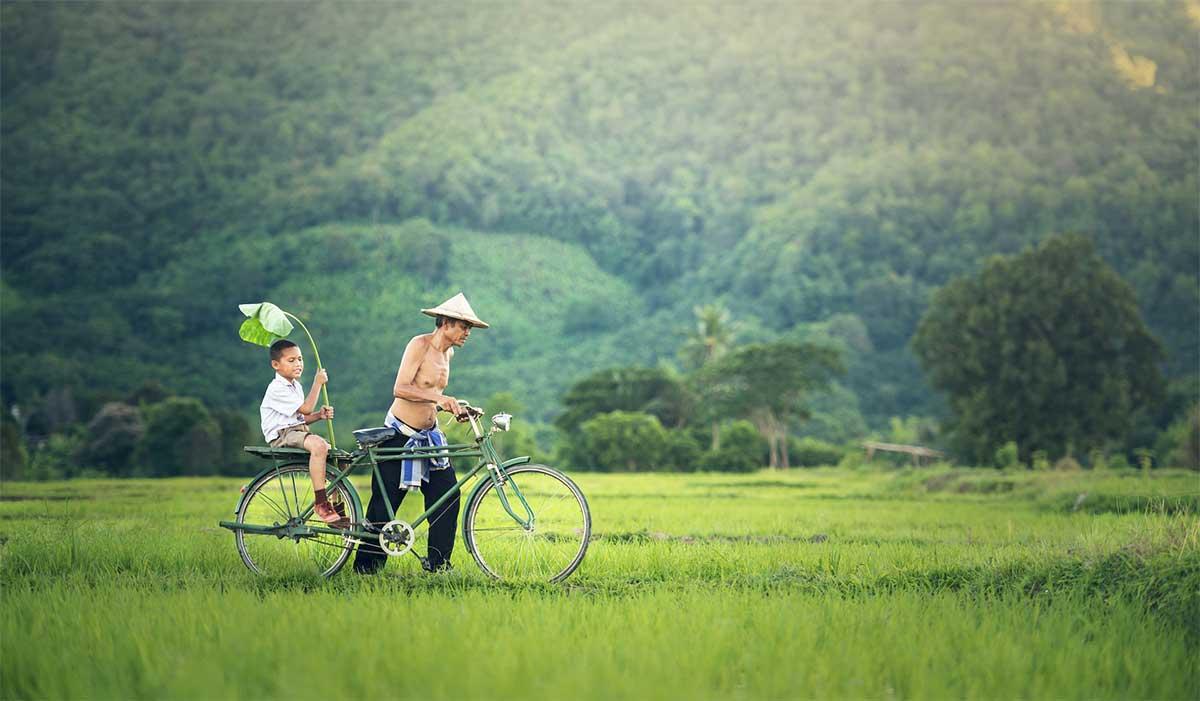 homme et son fils en velo dans les rizieres au Cambodge