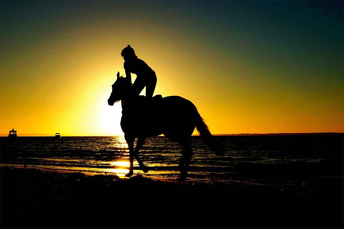 cheval sur la plage au costa rica