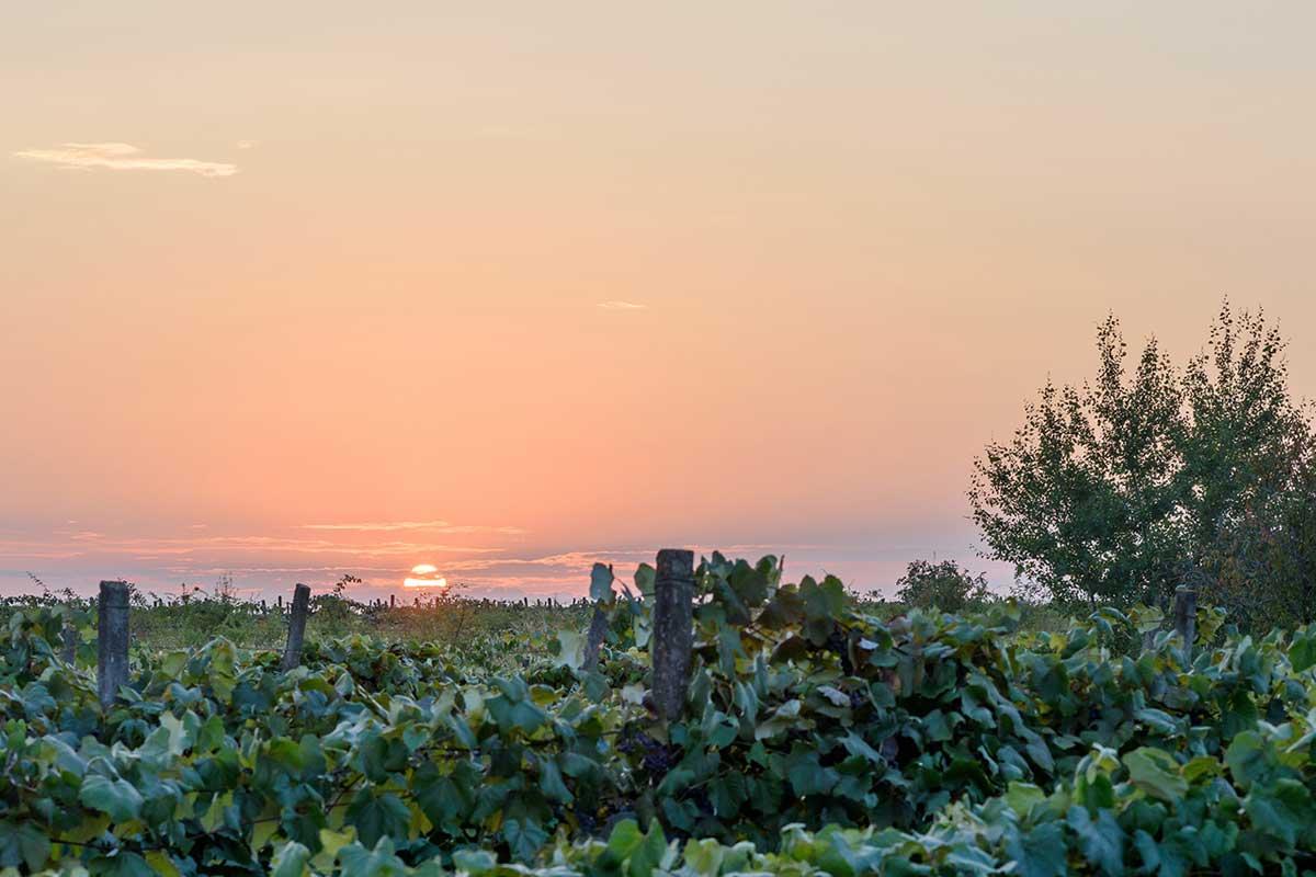 Coucher de soleil en Moldavie