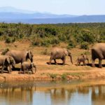 South Africa: a country of a thousand discoveries