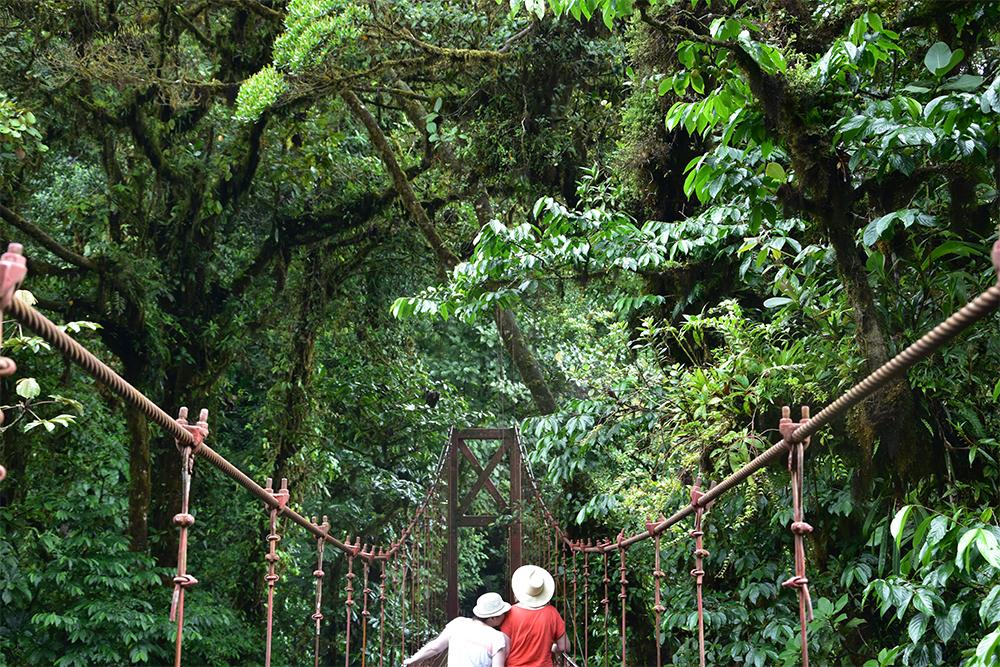 Costa Rica pont suspendu