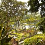 Découverte de l'Indonésie en 21 jours – Java – Bali – Florés – Komodo